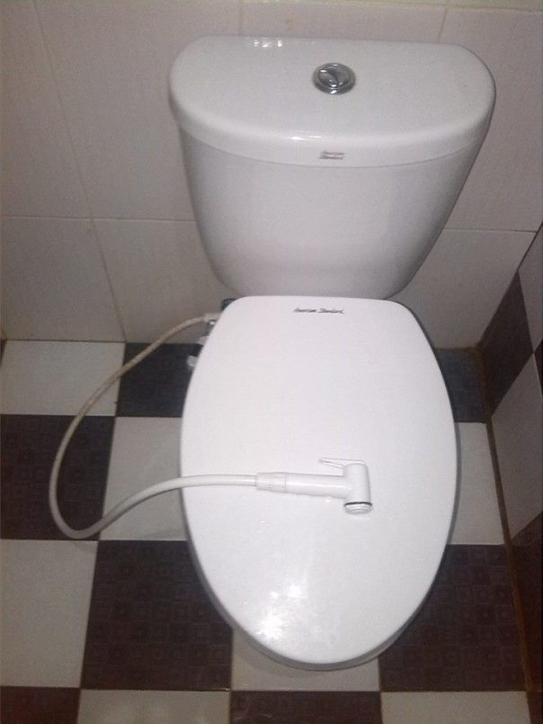 Limpiarse con el chorrito de agua ... Algun dia llegara esta tecnologia a Espanya?