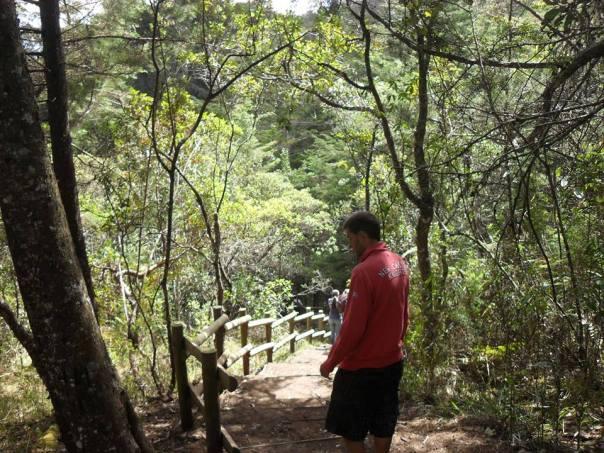 En el Parque Arvi en Medellin