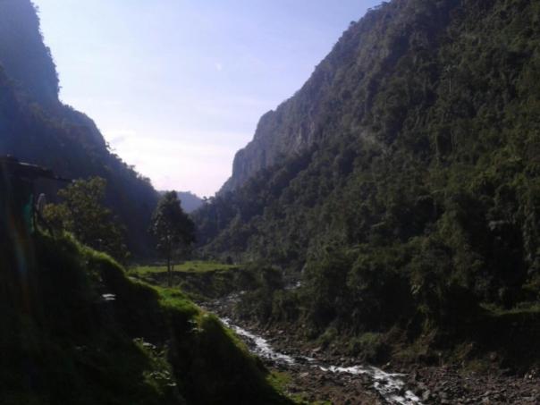 Vistas en el Valle de Cocora