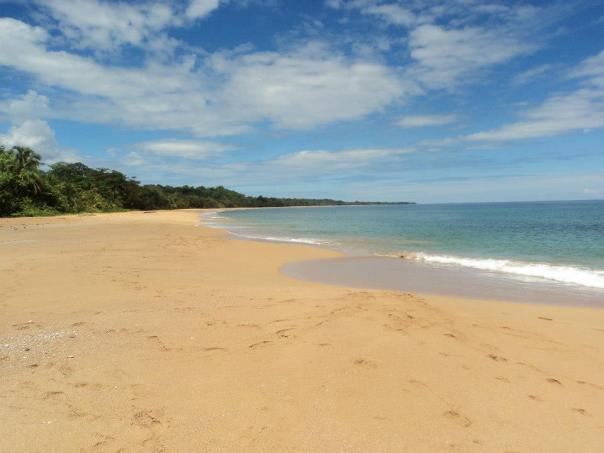 Playa en Bocas del Toro