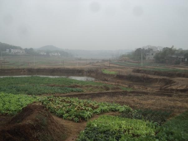 Paisaje en el campo en Changsha