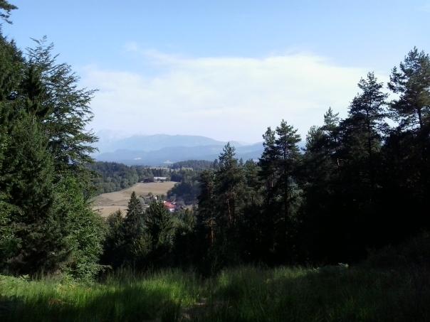 Paseando por las montañas , en Domzale .