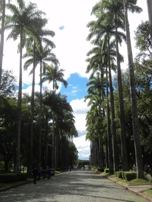 ´Paseando por el Parque .