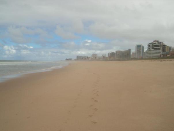 Larguisimas  playas , en Salvador de Bahia .
