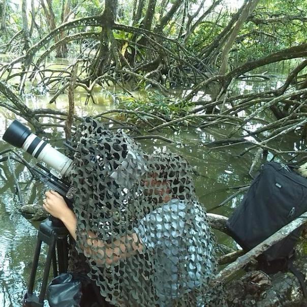 Tratando de captar la imagen del mono